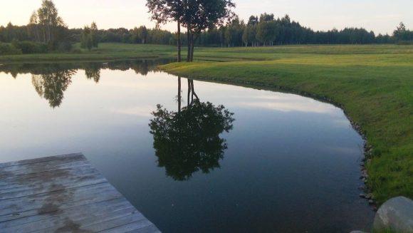 Tvenkinio kasimas ir apželdinimas, Molėtai